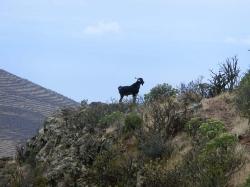 Für Sie vor Ort - La Gomera