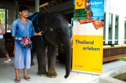 Toller Empfang in Thailand